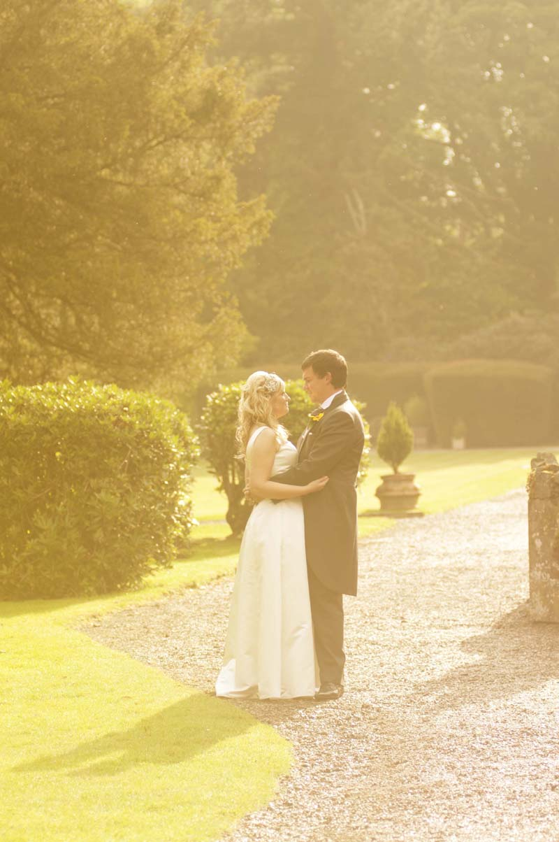 evening sun wedding image