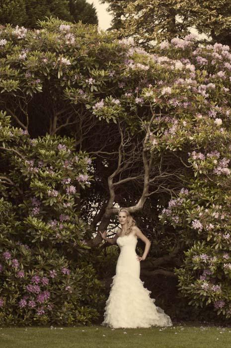 cumbrian wedding images