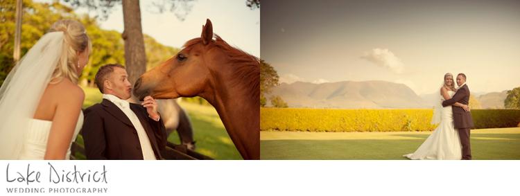 Equestrian wedding image